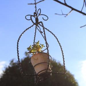 そよ風に揺れるバードゲージ風 flower pot